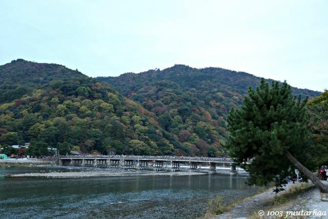 arashiyaman silta