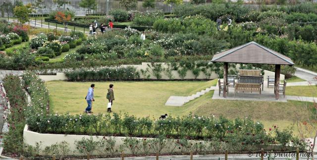 Hanasaki Farm